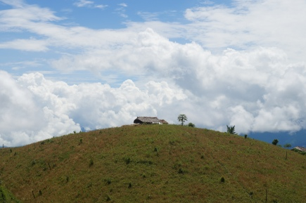 Naga jhum